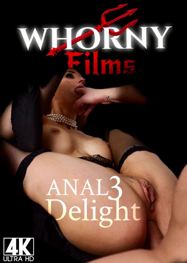 Anal Delight 3 POSTER