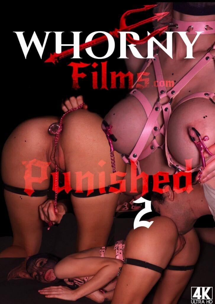 Punished 2 POSTER